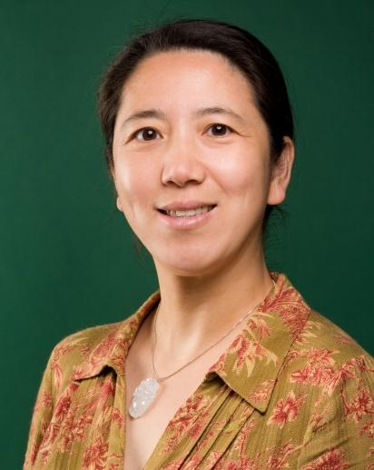 Jing Qi